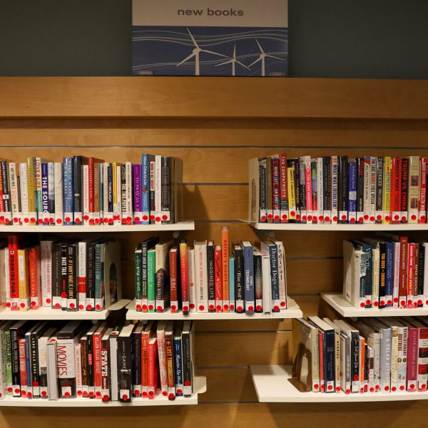 """Shelves of books under a sign saying """"new books"""""""