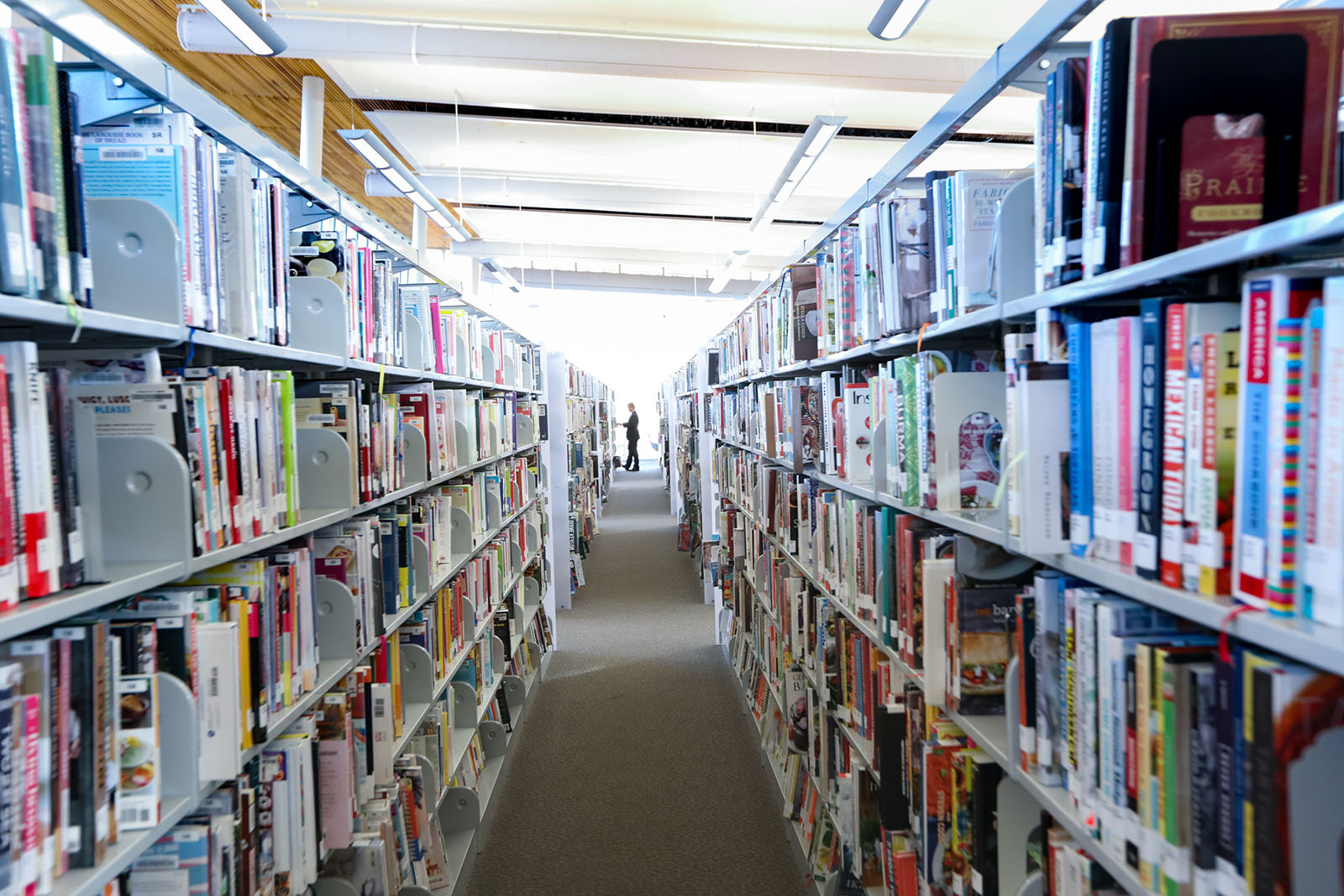 Long shelves of books, with a person standing at the end of the aisle