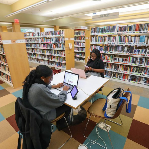 Two people use laptops at a table surrounded by bookshelves